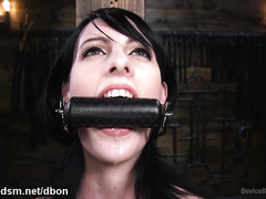 Severe BDSM for Alex Harper, brunette with smashing ass