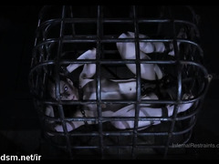 Encaged teen endures harsh pussy treatment while restrained
