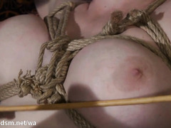 Lesbo whores in severe session of brutal ass whipping and oral sex