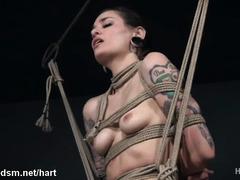 Severe pussy stimulation during sadistic rope bondage session