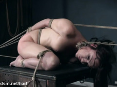 Naked brunette endures a lot of pain in harsh bondage XXX play