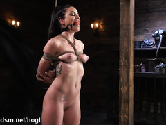 Busty beauty plays obedient in rough scenes of BDSM sex