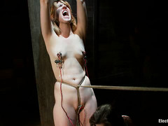 Sexy redhead Mallory Malone is shocked and clamped until she screams