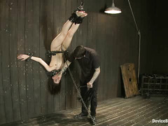 Delectable Kristine Kahill screams as she's tied up and given pain