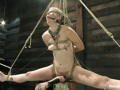 The first slave training lesson of the alluring and naughty Chastity Lynn