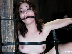 Belts keep Sarah Shevon hoisted into the air for her pussy whipping