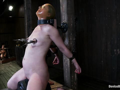 Bound cutie Sarah Shevon is whipped, caned, pinned and forced to orgasm