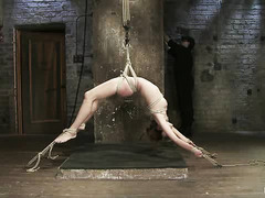 Gorgeous Amber Rayne screams as she's waxed, caned and strung up high