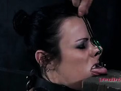 A beautiful slut is literally kept in place by a nail through her tongue