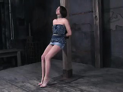 Young honey tied up for intense caning, whipping and pussy fucking with toys