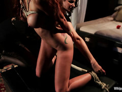 Porn star Monique Alexander is getting ready for her first kinky shoot