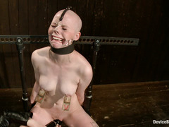 Cutie Alani Pi is held down and shaved after a brutal pussy whipping