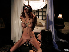 Redhead vixen Monique Alexander is bound for caning, spanking and orgasms