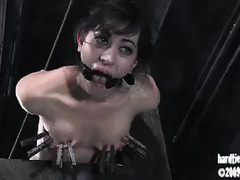 A dark-haired vixen is punished until she screams and whimpers