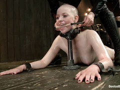 A bald sub is lashed to the ground for some hot wax torture