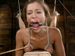 Audrey Rose gets tied up, caned and made to writhe in orgasm