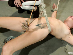 Bella Wilde is strung up and fucked in both holes by Bobbi Starr