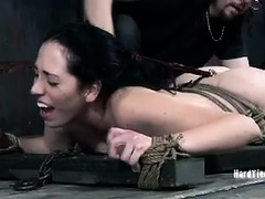A dominated woman is made to crawl and withstand painful abuse