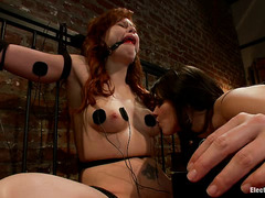 Shock pads and an electrified plug have Brooklyn Lee moaning and crying