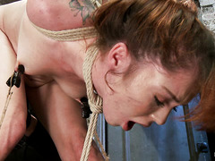 Bound and suspended, Jessie Palmer feels both pleasure and pain