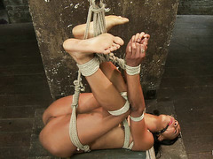 Nikki Darling is oiled up, tied up and made to cum over and over again