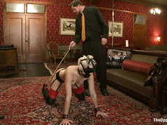 Dylan Ryan withstands a slave training session full of shocking