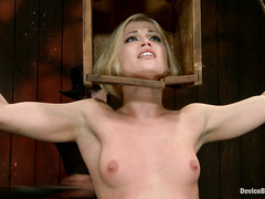 Small-titty beauty Ash Hollywood whines and struggles during BDSM