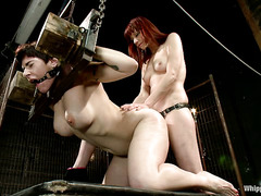 Annika's ass is punished by Maitresse Madeline's whip and strap-on
