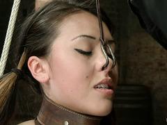 Tormented cutie Jayden Lee begs her cruel Mistress for mercy