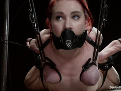 Two unfortunate beauties fall into the grips of Mistress Claire