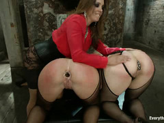 Savannah Fox and Alice Frost have their big, plump asses reamed