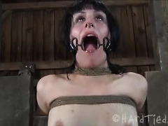 Bound brunette endures whipping, caning and even bursts of fire