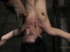 Tied and suspended slut is made to suck cock while her hole is pummeled