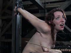 A restrained brunette cries out as her sensitive skin is caned