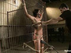 Cassandra Nix's slave training involves getting fucked by a gimp