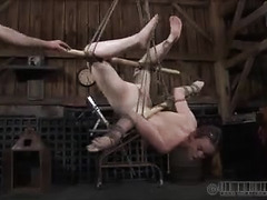Suspended in the air, this babe has her tight, bouncy ass spanked
