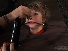 A blonde with short hair is viciously whipped and paddled while bound