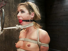 Ropes, fingers and orgasms keep Sheena Shaw writhing in pleasure