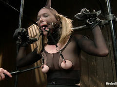 Dirty blonde Star is dominated by a babe who loves using clamps