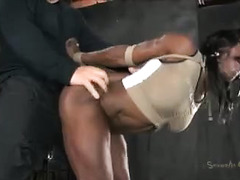 Lucky girls are subjected to a Dom's thick, thrusting erection
