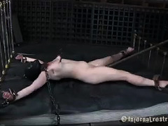 A brunette slut takes her punishment while bound and while free
