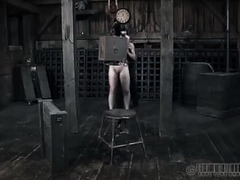 A blindfolded babe is humiliated and whipped by her sadistic Master
