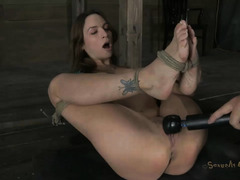 A sexy, dark-haired honey takes her Master's cock deep inside
