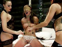Newbie Casey Calvert gets her first taste of extreme femdom fun