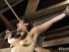 A pigtailed cutie is denied sweet orgasm after harsh punishments