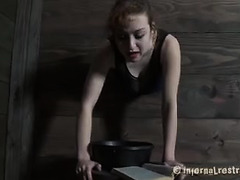 A redhead in the stocks is spanked, caned and fucked by her Master