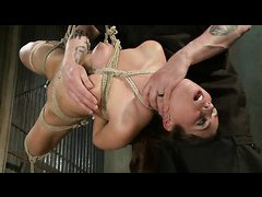 Naughty broad Serena Blair is bound by rope and an anal hook