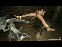 Tan stunner Rilynn Rae squirts uncontrollably while playing with dildos