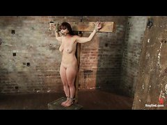 Poor Bella Rossi learns the meaning of tit torture during this lezdom session