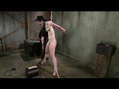Petite slut Katharine Cane is put through stimulation overload